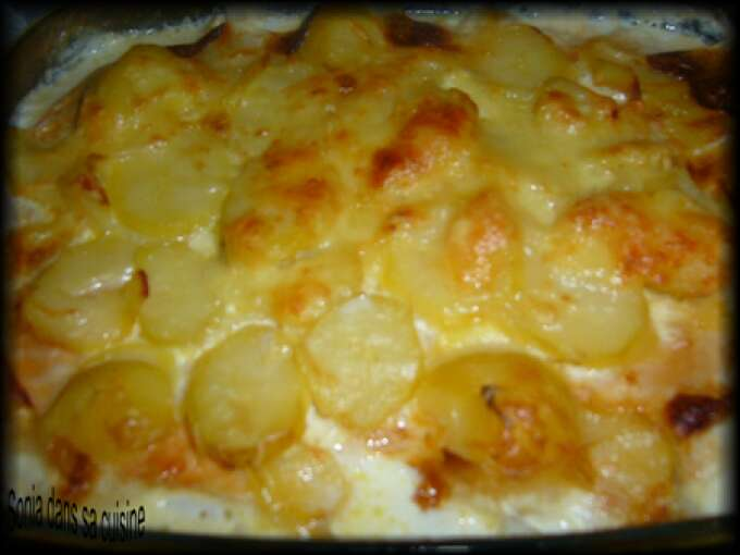 Gratin endives pomme de terre raclette jambon recette ptitchef - Gratin de pomme de terre jambon ...