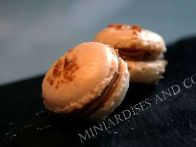Recette Macaron aux speculoos