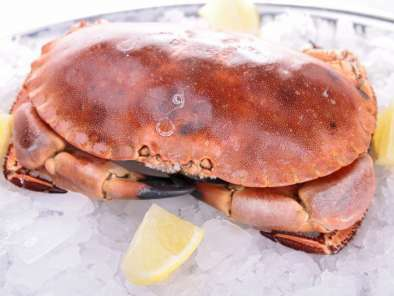 recettes crabe