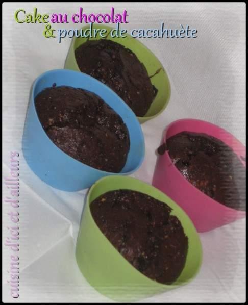 Batonnets Au Chocolat Et Aux Cacahuètes: Cake Au Chocolat & Poudre De Cacahuète