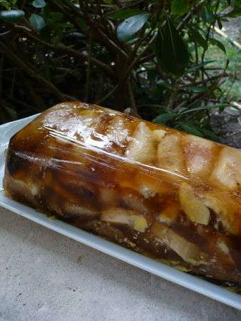 Marbr de foie gras aux poires aux p ches ou aux pommes - Gelee de pommes avec extracteur ...
