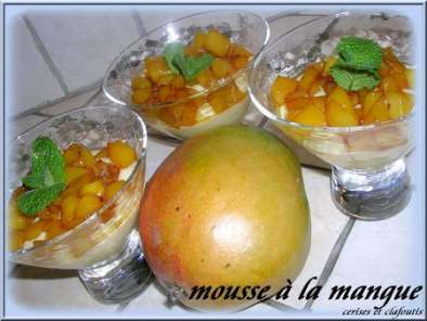 MOUSSE DE DE BROCCIU AUX MANGUES CARAMELISEES, Photo 3