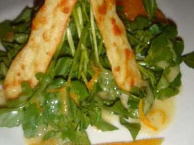 salade de cresson l 39 orange et ses craquelins au parmesan recette ptitchef. Black Bedroom Furniture Sets. Home Design Ideas
